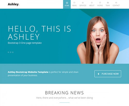 ASHLEY Website Template